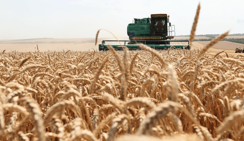 Тульские фермеры смогут купить сельхозтехнику на льготных условиях