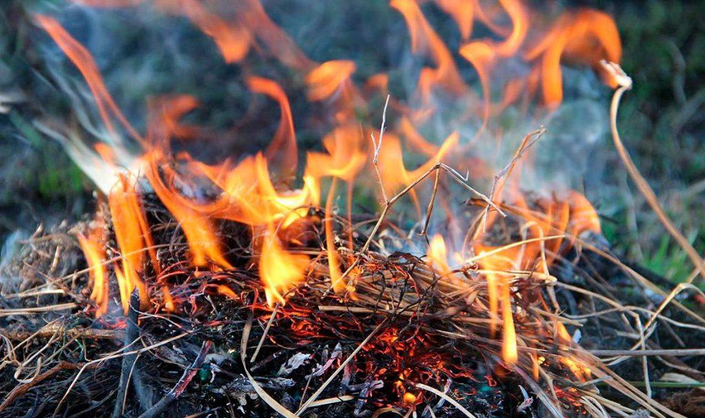 В Тульской области – 4 класс пожароопасности