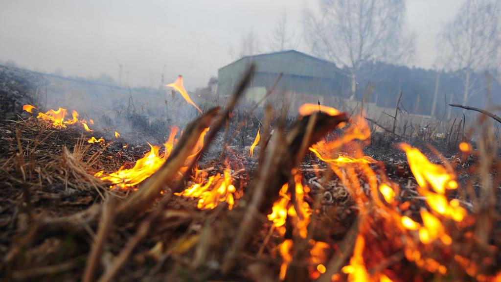 Метеопредупреждение в Тульской области: чего опасаться сегодня
