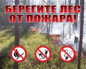 Вероятность пожаров выросла в лесах Калужской области