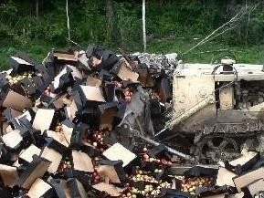 80 тонн подозрительных фруктов уничтожили на полигоне