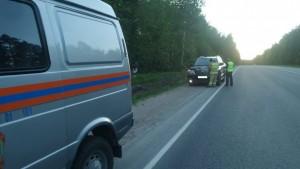 Косуля попала под колеса иномарки в Дзержинском районе