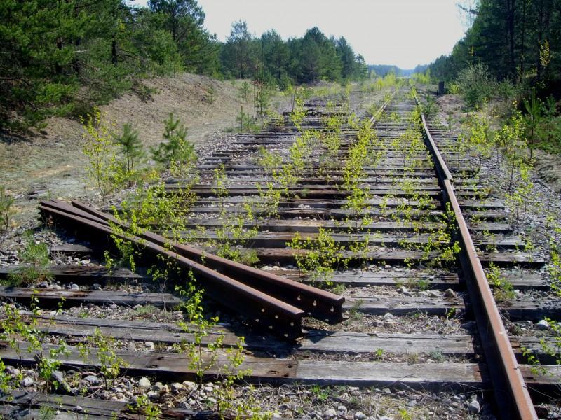Двое туляков пытались украсть железнодорожные рельсы