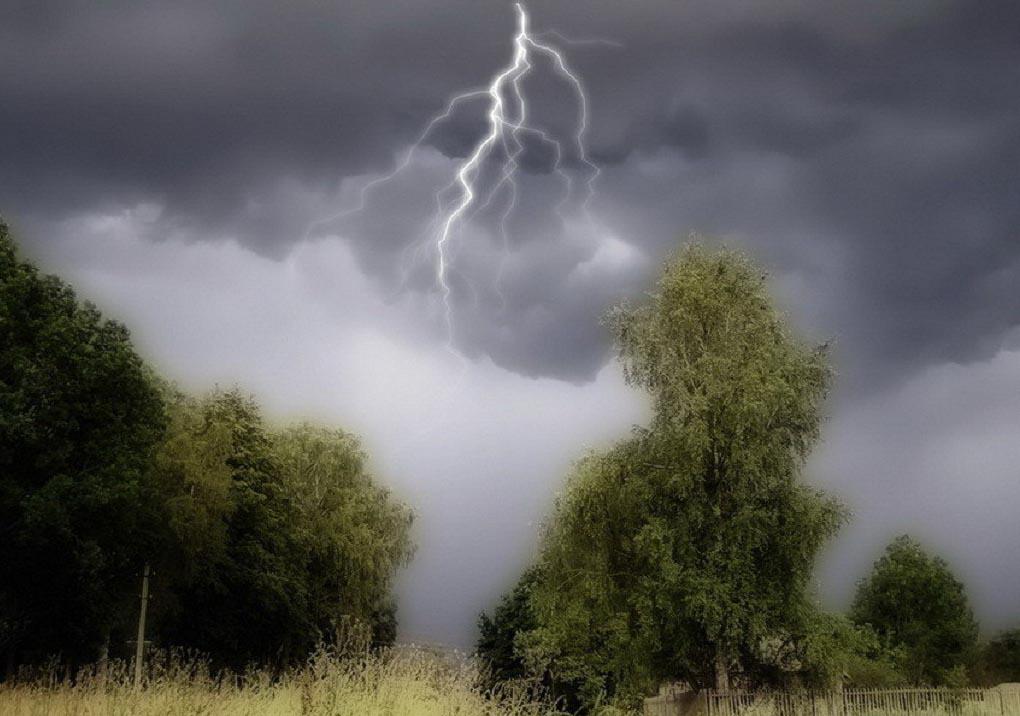 В Тульской области из-за грозы и ветра объявили метеопредупреждение